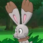 Bunnelby_screen02_Pokemon_X-e-Y_pokemontimes-it