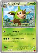 Quilladin_collezioneY_carte_Pokemon_XY_corocoro_pokemontimes-it
