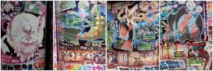 MegaSceptile_MegaBlaziken_e_MegaSwampert_pokemontimes-it