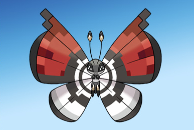 vivillon_motivo_poke_ball_in_italia_pokemontimes-it