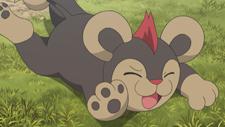 anticipazioni_episodio_xyz04_pokemontimes-it