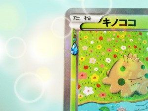 shroomish_pokekyun_collection_premium_set_xy_gcc_pokemontimes-it