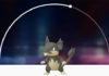 banner_rattata_alola_go_pokemontimes-it