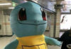 banner_star_k-pop_fan_auguri_compleanno_pokemontimes-it