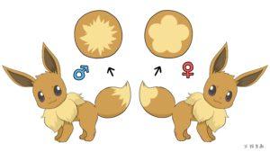 artwork_differenza_genere_eevee_lets_go_pikachu_eevee_pokemontimes-it