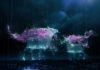 banner_spettacolo_effetti_pikachu_outbreak_eventi_pokemontimes-it