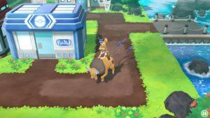 tauros_cavalcabile_lets_go_pikachu_eevee_switch_pokemontimes-it