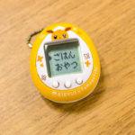 foto_tamagotchi_eevee_img05_gadget_pokemontimes-it