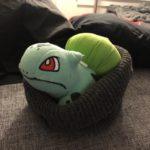 bulbasaur_berretto_img03_twitter_pokemontimes-it
