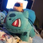 bulbasaur_berretto_img07_twitter_pokemontimes-it