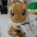 pikapika_foto12_lucky_bag_2019_center_gadget_pokemontimes-it.