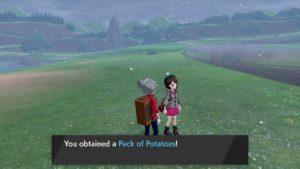 treehouse_e3_2019_img08_spada_scudo_videogiochi_switch_pokemontimes-it