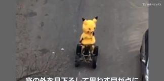 pikachu_fake_mascotte_guida_auto_mondo_pokemontimes-it