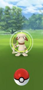 New-Pokemon-Snap-Celebration-Event-05